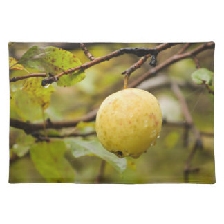 Fall Apple Cloth Placemat