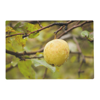 Fall Apple Laminated Place Mat