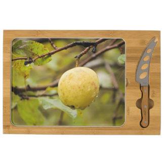 Fall Apple Rectangular Cheeseboard