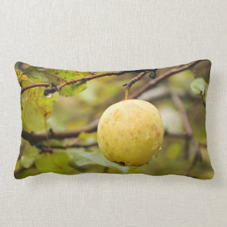Fall Apple Throw Pillows