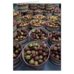 Fall Apples Stationery Note Card
