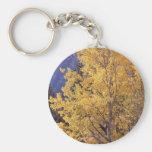 Fall aspen tree keychain