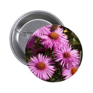 Fall Aster Round Pin