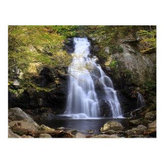 Fall at the Falls Postcard