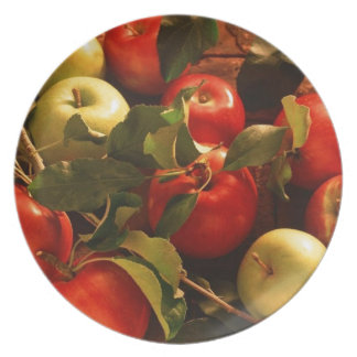 Fall Autumn Apples Design Plates