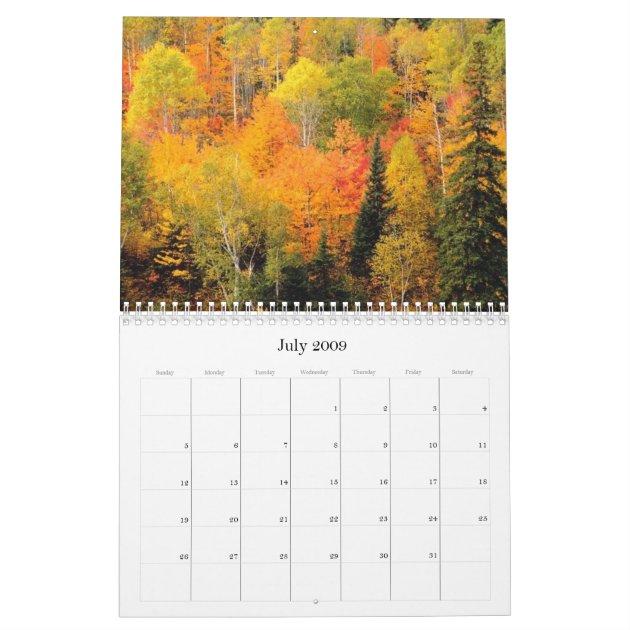 Fall Autumn Foliage 2017 Calendar Zazzle