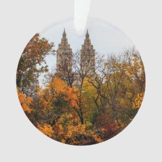 Fall Autumn Landscape Photo of Central Park