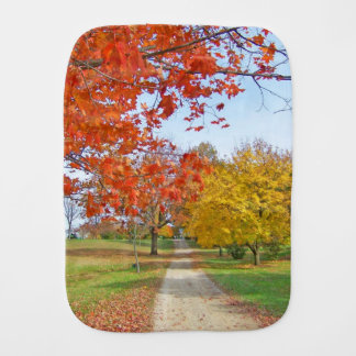 Fall Autumn Leaves Burp Cloth