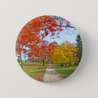 Fall Autumn Leaves Button