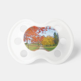 Fall Autumn Leaves Pacifier