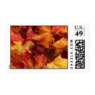 Fall Autumn Leaves Postage Stamp