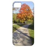 Fall Autumn Park Path iPhone 5 Covers