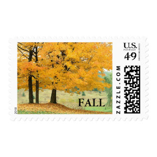 FALL Autumn Wedding Fall Wedding Invitation Stamps