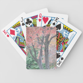 Fall Beauty Bicycle Playing Cards