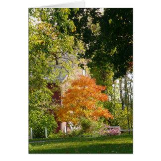 Fall Beauty Card