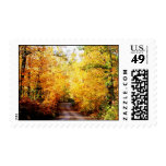 Fall beauty postage stamps