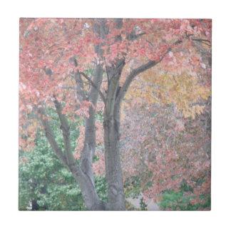 Fall Beauty Tiles
