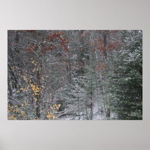 Fall Before Winter Print