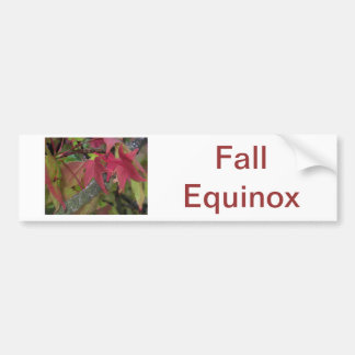 Fall Begins - Maple Leaves are Turning Red Bumper Sticker