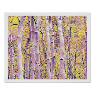 Fall Birch Poster