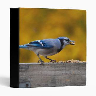 Fall Blue Jay Binder