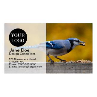 Fall Blue Jay Business Card