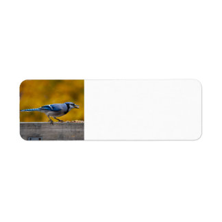 Fall Blue Jay Labels