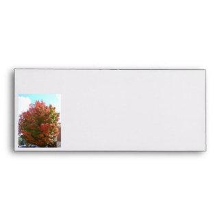 Fall Burst Of Color, Tree Envelope