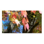 Fall Cards Business Card Template