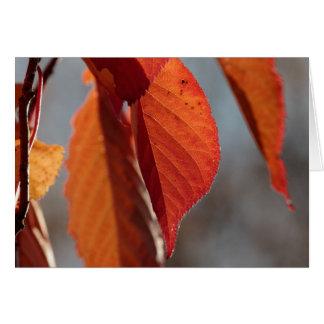 Fall Cherry Leaf Card