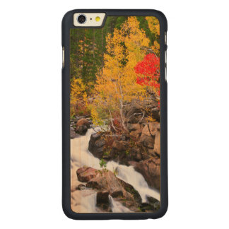Fall color along Bishop Creek, CA Carved Maple iPhone 6 Plus Case
