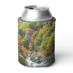 Fall Color at Ohiopyle State Park Can Cooler
