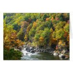 Fall Color at Ohiopyle State Park Card