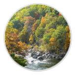 Fall Color at Ohiopyle State Park Ceramic Knob