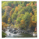 Fall Color at Ohiopyle State Park Cloth Napkin