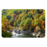 Fall Color at Ohiopyle State Park Magnet
