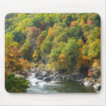 Fall Color at Ohiopyle State Park Mouse Pad