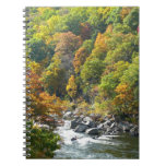 Fall Color at Ohiopyle State Park Notebook