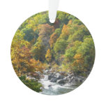 Fall Color at Ohiopyle State Park Ornament