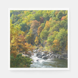 Fall Color at Ohiopyle State Park Paper Napkin