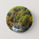 Fall Color at Ohiopyle State Park Pinback Button