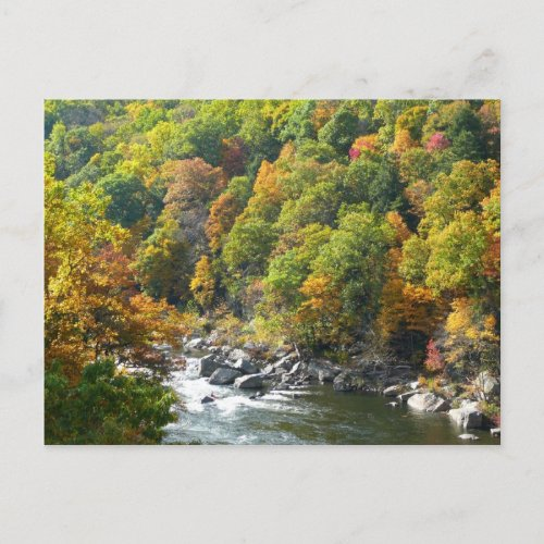 Fall Color at Ohiopyle State Park Postcard postcard