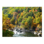 Fall Color at Ohiopyle State Park Postcard