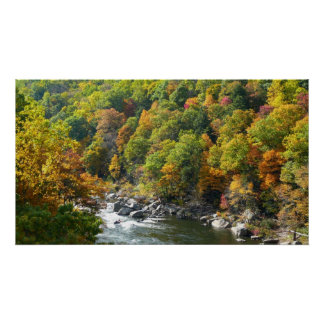 Fall Color at Ohiopyle State Park Poster