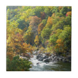 Fall Color at Ohiopyle State Park Tile