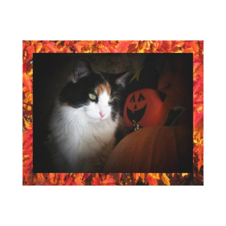 Fall Color Calico Maine Coon cat Canvas Print