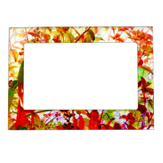 Fall Color Garden Flowers Vines Art Photo Fridge Magnetic Frame