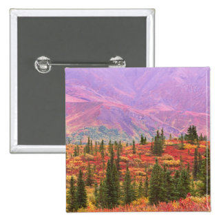 Fall color in Denali National Park 2 Inch Square Button