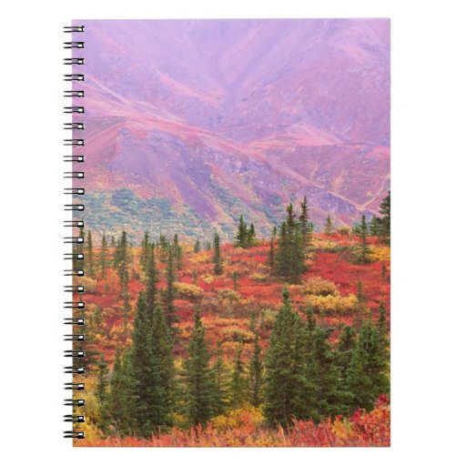 Fall color in Denali National Park Note Book