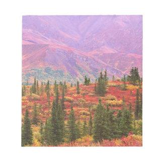Fall color in Denali National Park Notepad